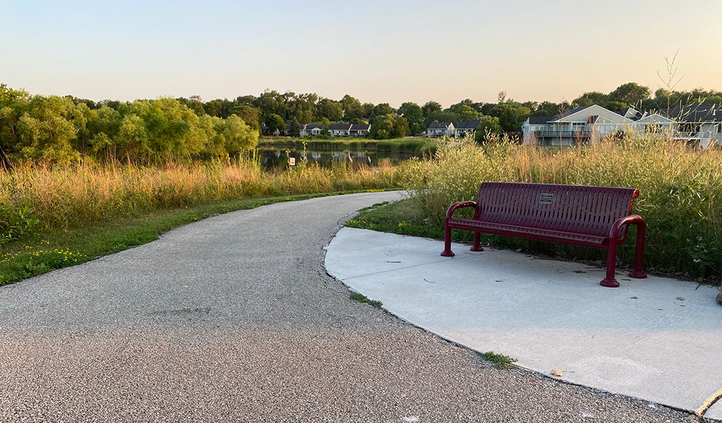 a strategically place bench next to an aya hayden trail alongside a wetland area