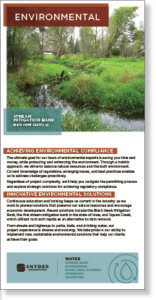 Screenshot thumbnail of environmental permitting brochure.