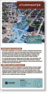 Screenshot thumbnail of stormwater management plan brochure.