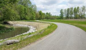 concrete trail winding along tree line