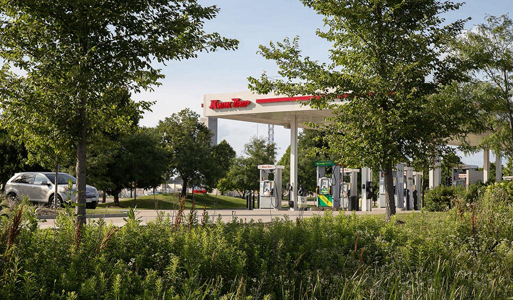 native vegetation next to kwik trip gas station