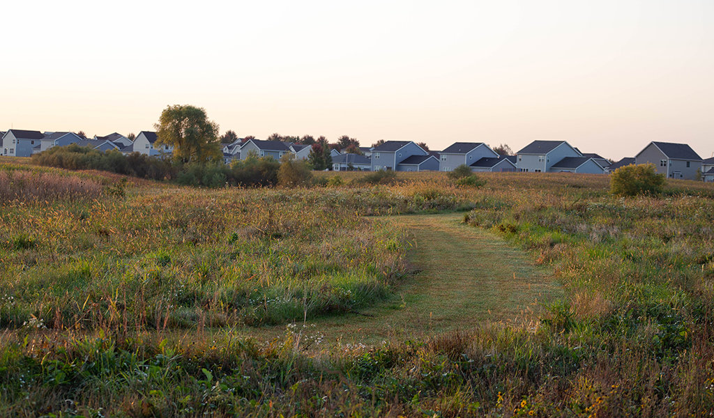 grassy area with housing development in the background