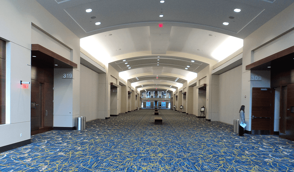 long hallway with arched ceilings and blue carpet