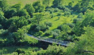 lush green aerial view of walking trail bridge