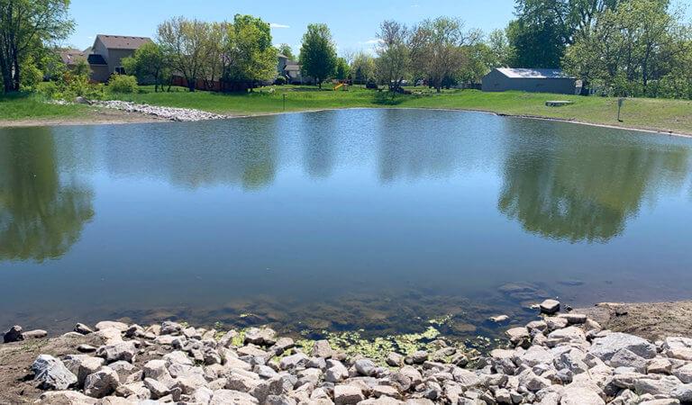 recent rehabilitated wildflower pond improving stormwater retention
