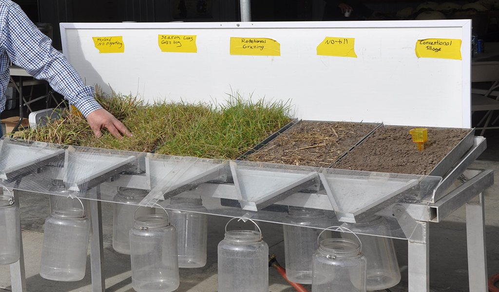 demonstration of runoff with different vegetation levels