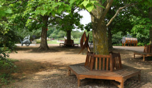 Star-shaped benches surround several trees in the North lawn area.